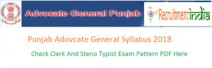 Punjab Advocate General Syllabus