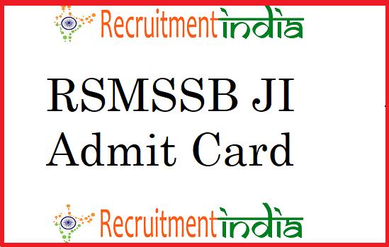 RSMSSB JI Admit Card