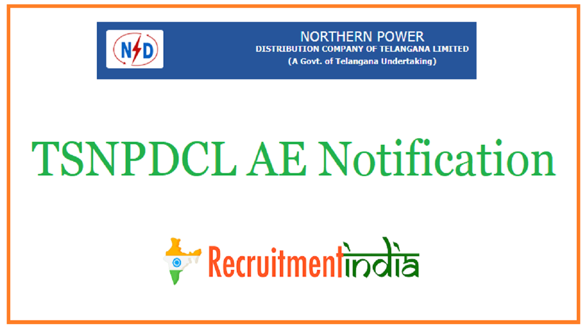 TSNPDCL AE Notification